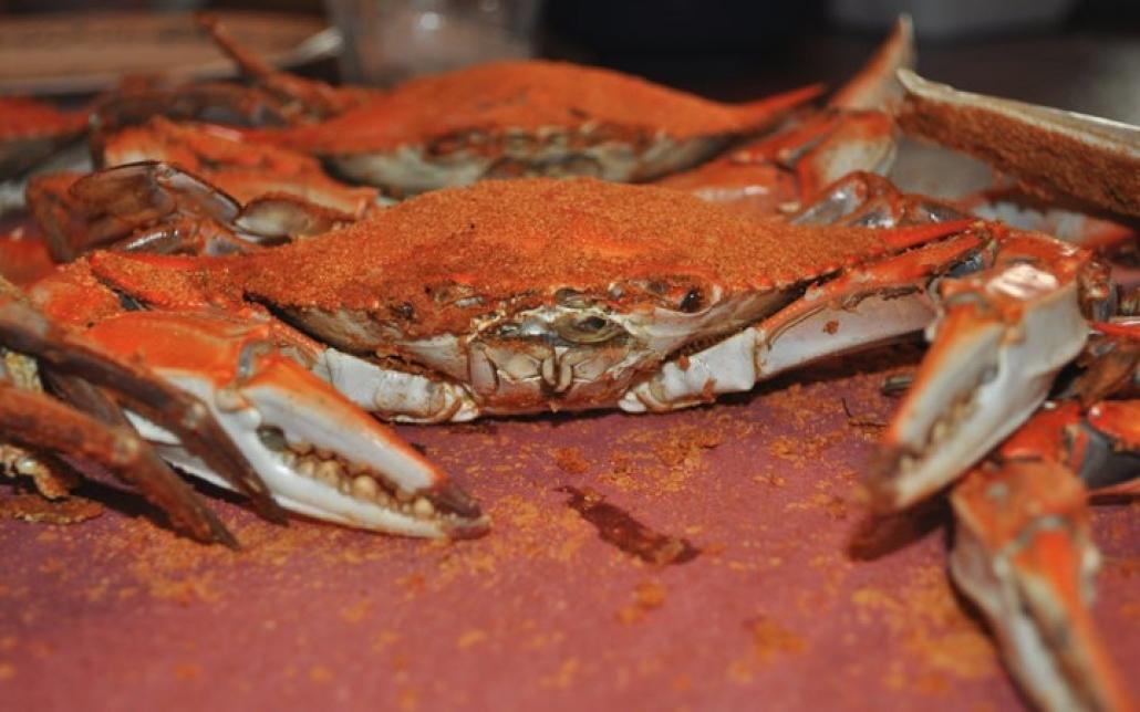 Best treat on the Delmarva Peninsula!